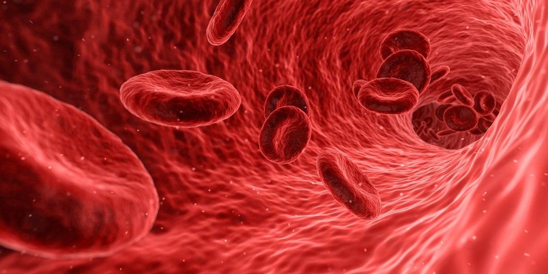 IHY_Sintomi_malattie_cardiovascolari_infarto_cardiologia_Gianturco_cuore_angina_breathless_cardiopalma